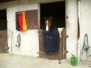 2012 EM Dinard_3
