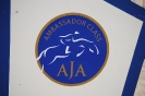 2014 Internationales AJA-Turnier in Barcelona